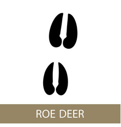 Trace of a roe deer animal vector