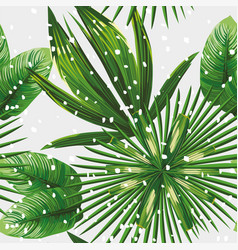 tropical leaves pattern snow vector image