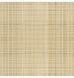 canvas linen fabric vector image vector image