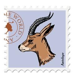 Antelope vector