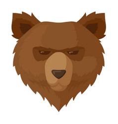 Brown bear icon wildlife nature grizzly animal vector