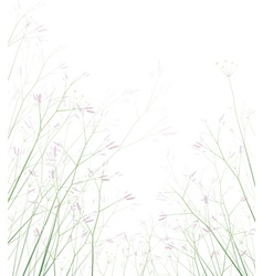 floral background isolated vector image