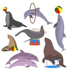 marine circus animals set vector image
