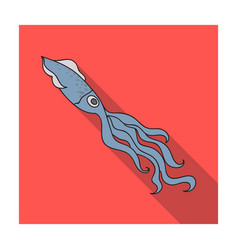 squid icon in flat style isolated on white vector image