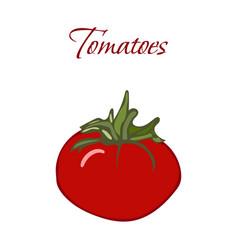 tasty veggies tomatoes vector image