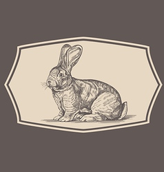 Vintage rabbit emblem vector