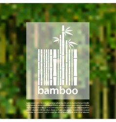 Bamboo logo on a blurred background design vector image vector image