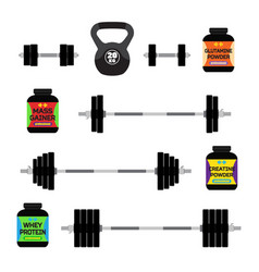 sports nutrition supplements barbells whey protein vector image vector image