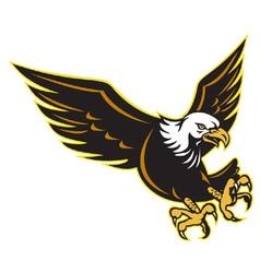 American bald eagle flying vector