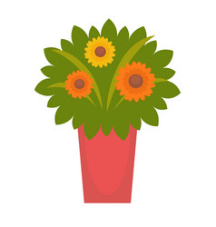 bouquet with fresh flowers vector image