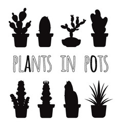 home plants in pots black silhouettes set vector image