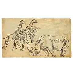 Rhinoceros and giraffes vector