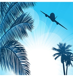 Summer background with palms and airplane vector