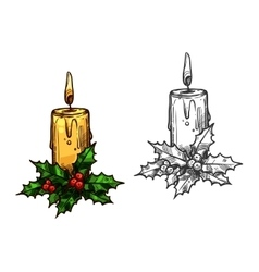 Christmas candle tree light on holly leaves sketch vector image