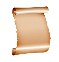 old blank scroll paper on white background vector image
