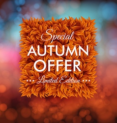 Special autumn offer advertisement poster Blurred vector image
