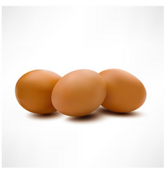 3d eggs isolated on white backdrop realistic style vector image