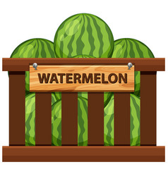 A crate of watermelon vector