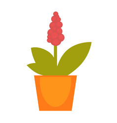 bright red potted flower vector image vector image