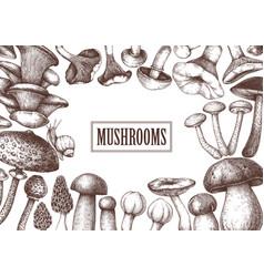Edible mushrooms design hand drawn healthy food vector