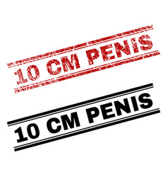 grunge textured and clean 10 cm penis stamp prints vector image