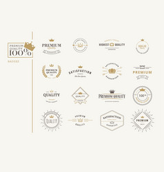 set premium quality stickers and elements vector image