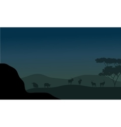 Silhouette of antelope and bison vector