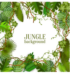 tropical jungle lianas and palms banner with space vector image