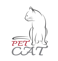 Cat Pet vector image