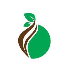 circle leaf nature logo vector image