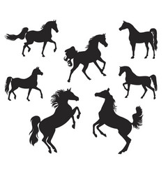 silhouettes of arabian horse vector image vector image