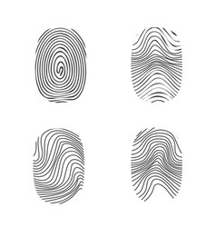 fingerprint in black silhouette on white vector image vector image