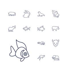 13 wild icons vector