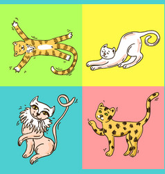 beautiful hand drawn cute cats vector image