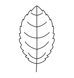 beautiful leaf icon outline style vector image
