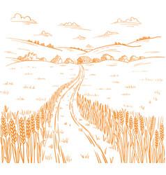 Field road rural landscape hand drawn sketch vector
