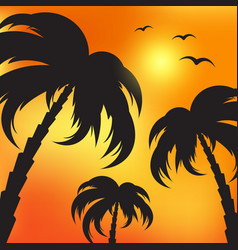 palm silhouettes and evening sky vector image