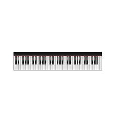 Piano keyboard 61 keys isolated vector image