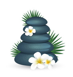 Plumeria flowers and zen stone isolated on white vector