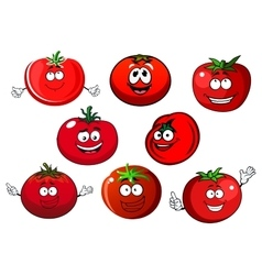 Ripe isolated red tomato vegetables vector