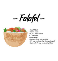 Traditional dish jewish cuisine falafel pita vector