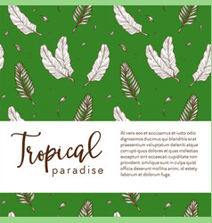 tropical paradise banner palm leaves sketch vector image