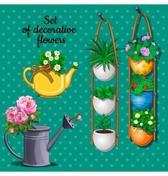 Ornamental plants set pots watering can and vase vector image vector image