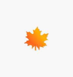 Colorful maple leaf with shadow design vector