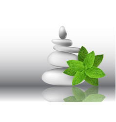 Mint herb leaves with white stones vector