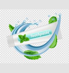 mint toothpaste water splash mint leaves vector image