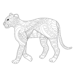 Panther coloring for adults vector