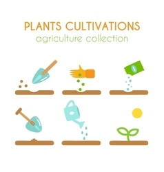 Plant cultivation Sowing and planting vector