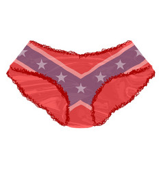 Rebel flag knickers vector