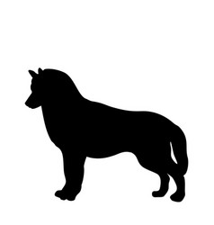 black silhouette of dog standing backways vector image